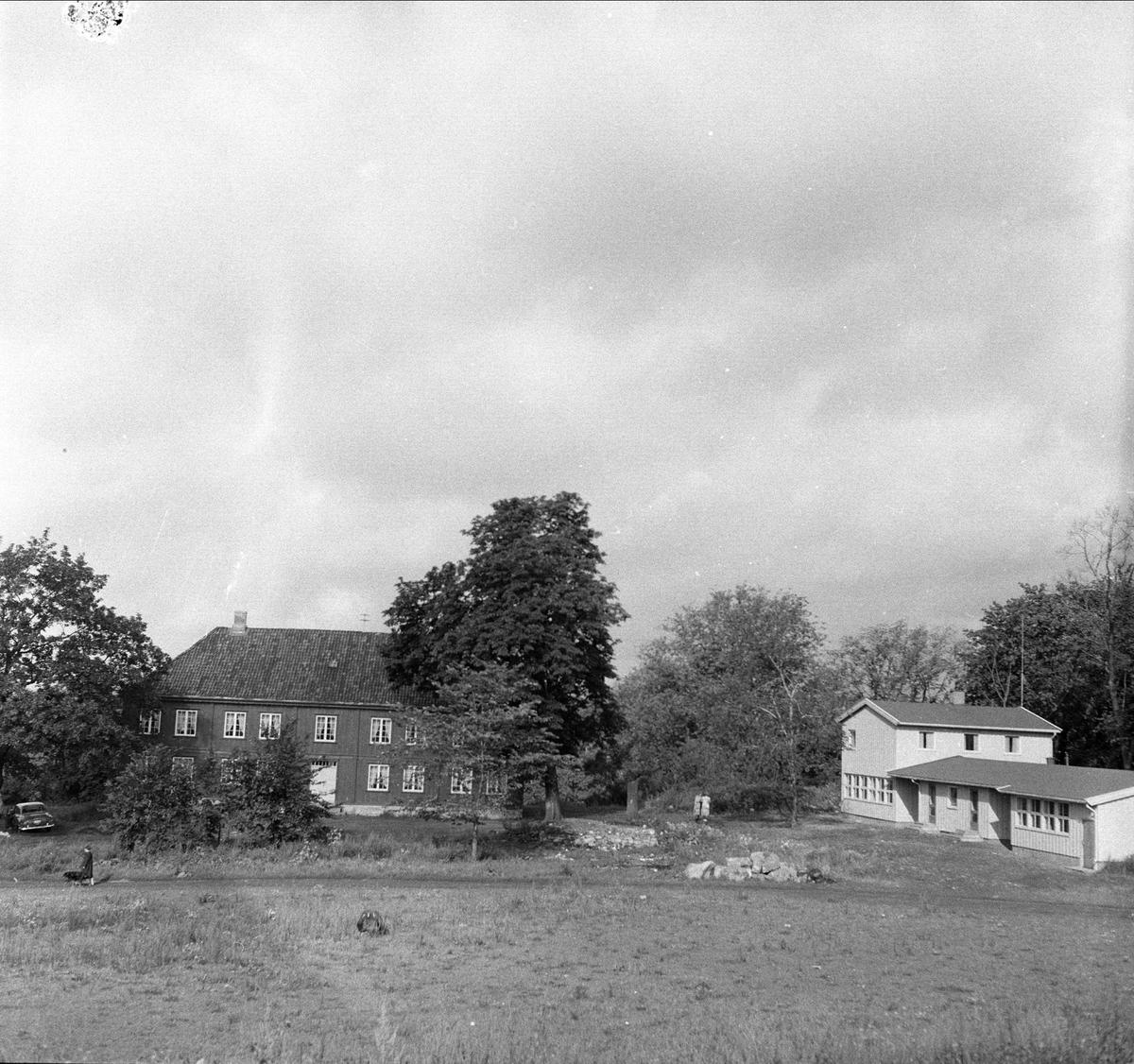 Østensjøvannet, Oslo, 13.08.1956. Bygninger.