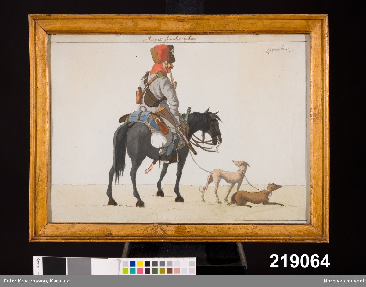 Ryttare till häst, två hundar Djur, häst, hund