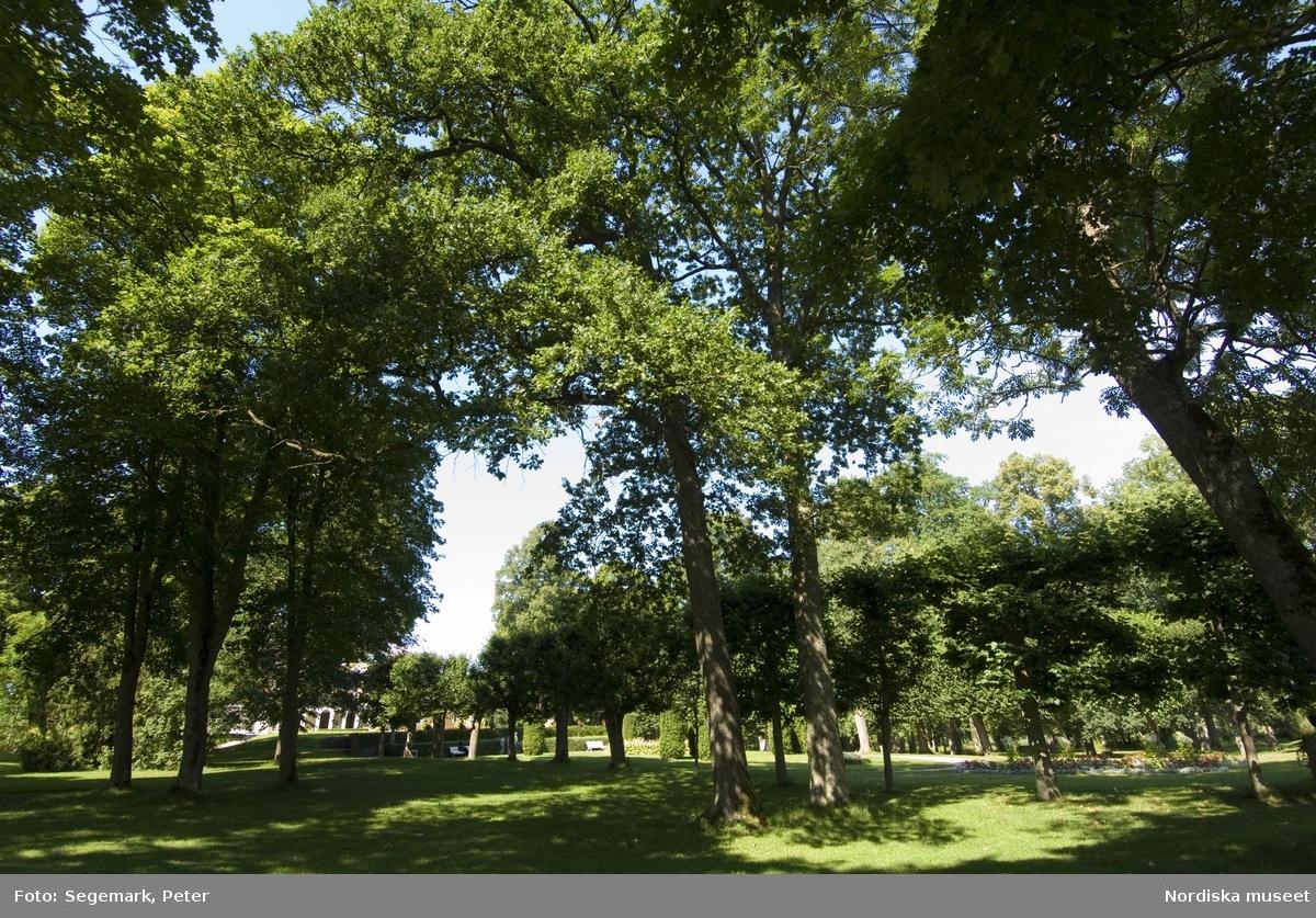 """Julita gård, sommarsäsong. Park och utomhusmiljöer vid Öljaren med besökare, Bilder tagna för tävlingen """"Årets Park"""". Stora huset, Franska  parken, lusthuset, Rosenträdgården, Orangeriet, Köksträdgården och Örtagården samt Skansenstugoorna."""