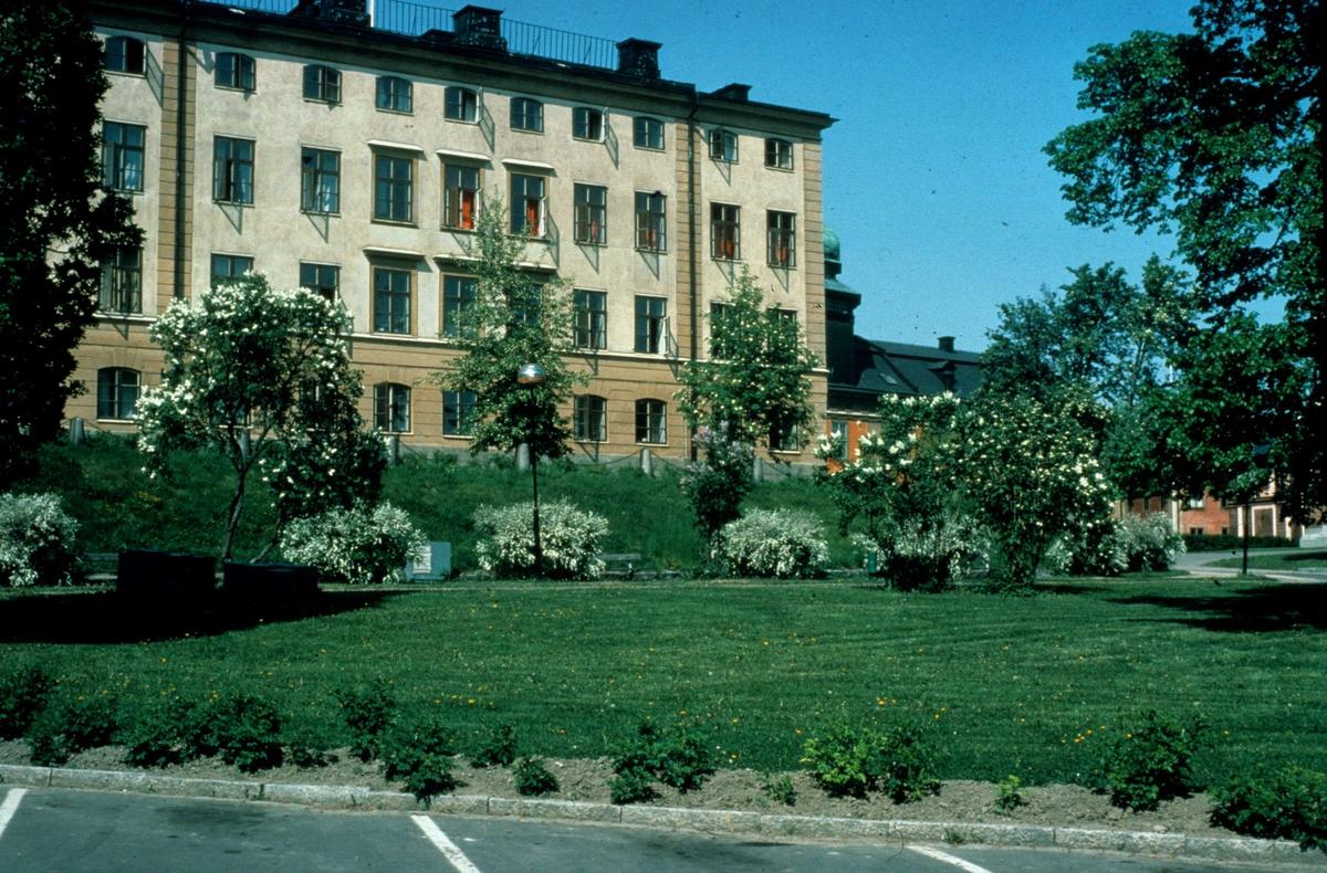 Riddartorget i Uppsala 1982. I bakgrunden Dekanhuset