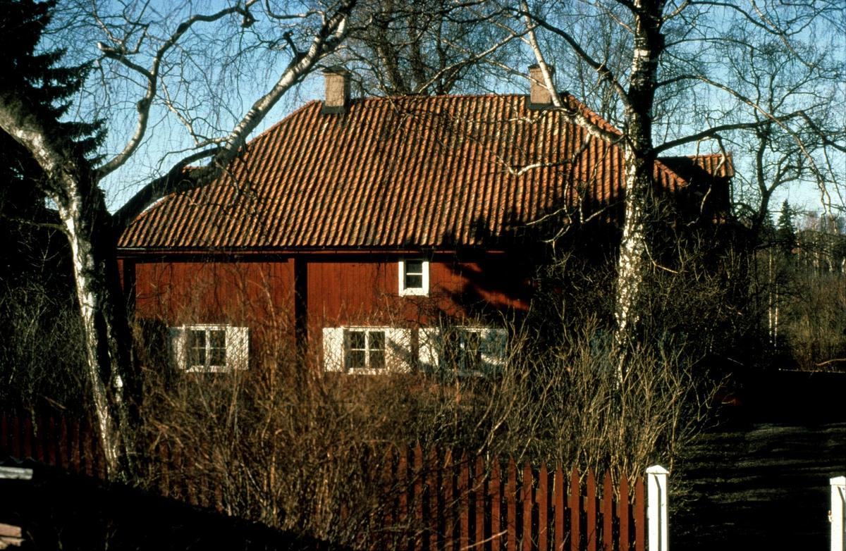 Lugnet, kvarteret Blåsenhus (nuvarande kvarteret Plantskolan), Uppsala 1981