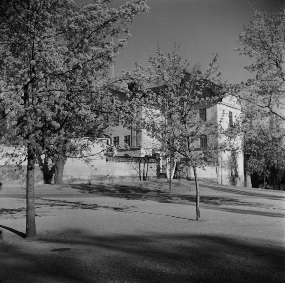 Vy mot Ärkebiskopsgården från Nathan Söderbloms plan, Uppsala