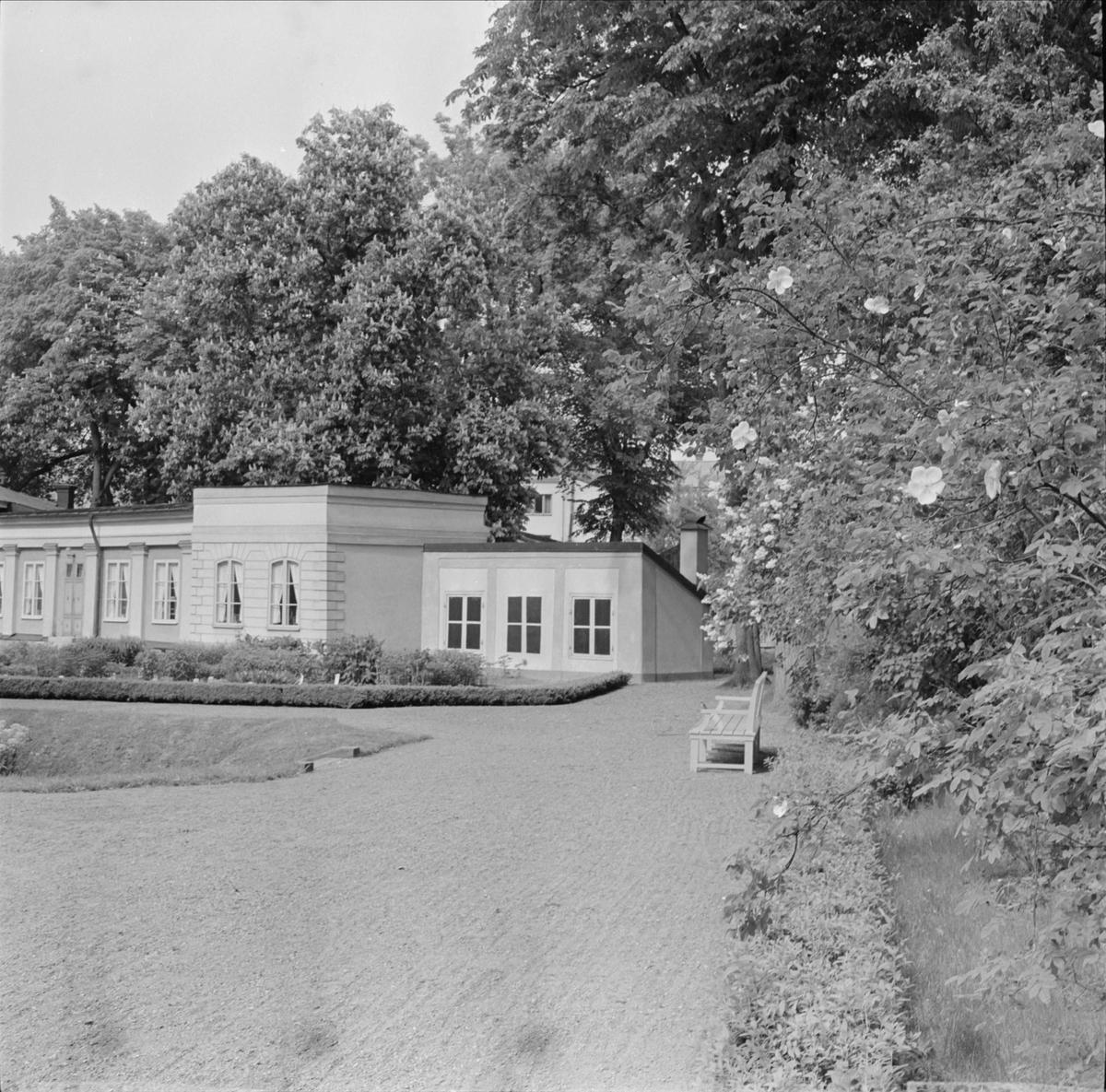 Linnéträdgården i kvarteret Örtedalen, Dragarbrunn, Uppsala