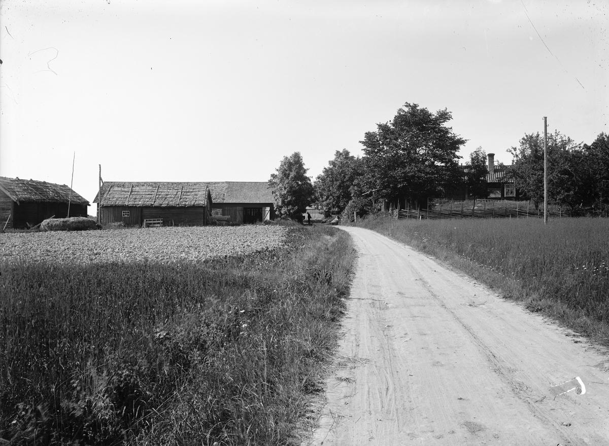 Gårdsmiljö, Locksta 1:5, Funbo socken, Uppland, sannolikt 1920-tal