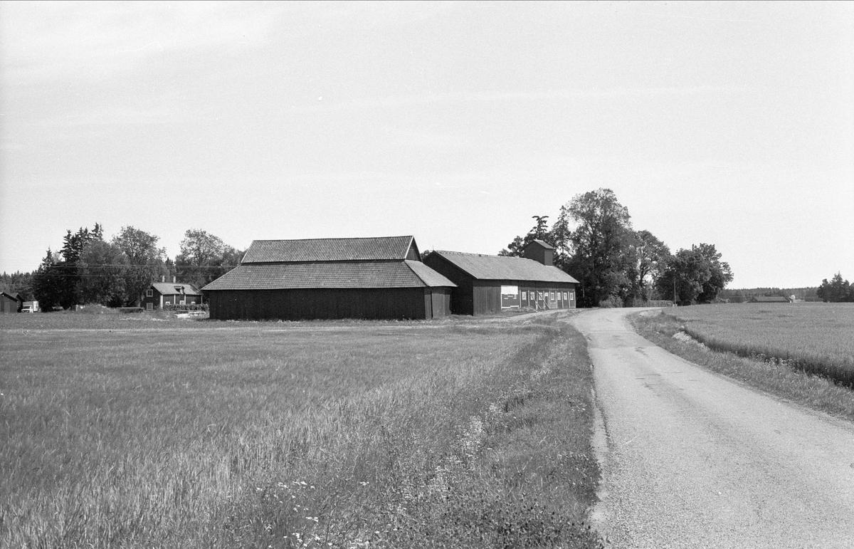 Vy över Gäsmesta 1:7, Börje socken, Uppland, 1983