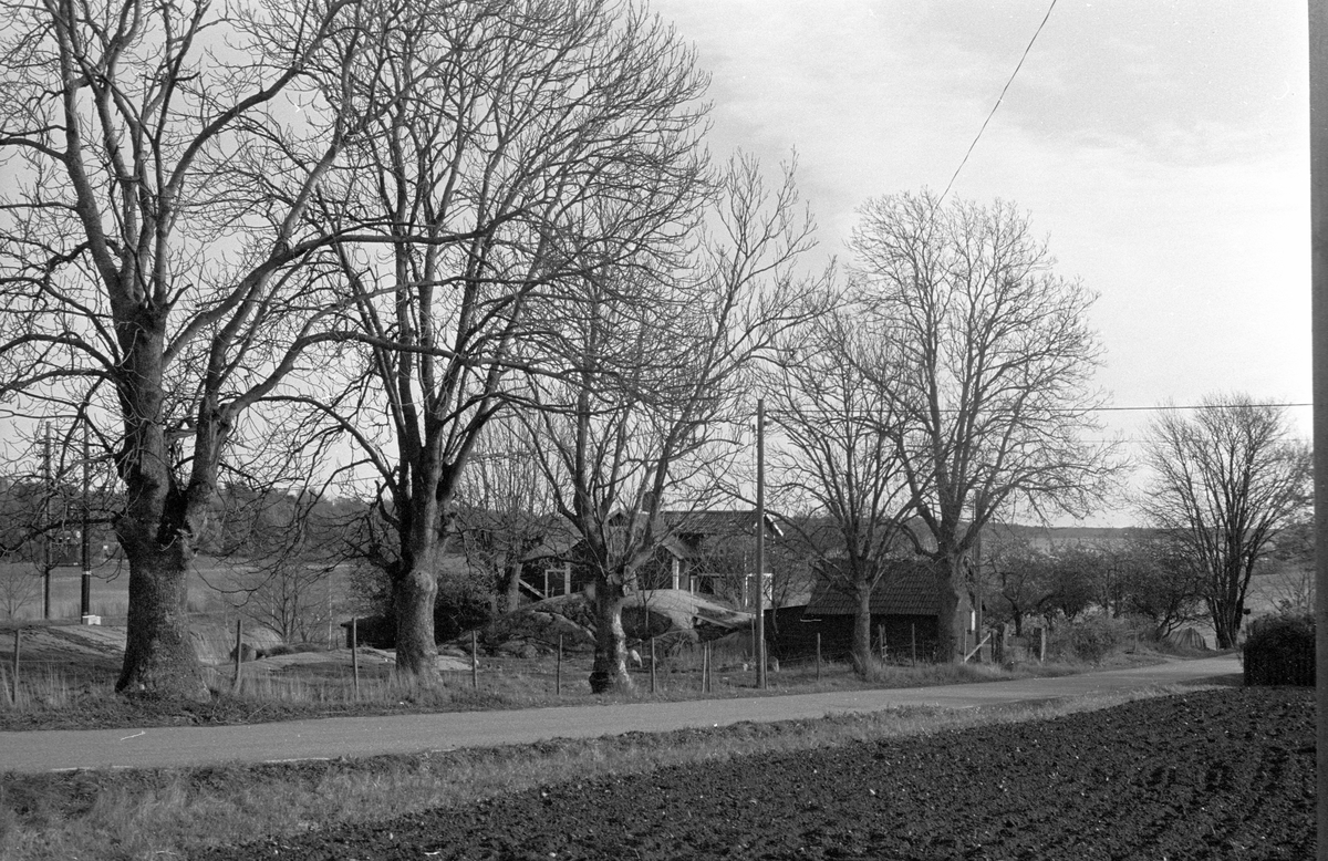 Ekonomibyggnader, Viggeby 1:1, Dalby socken, Uppland 1984