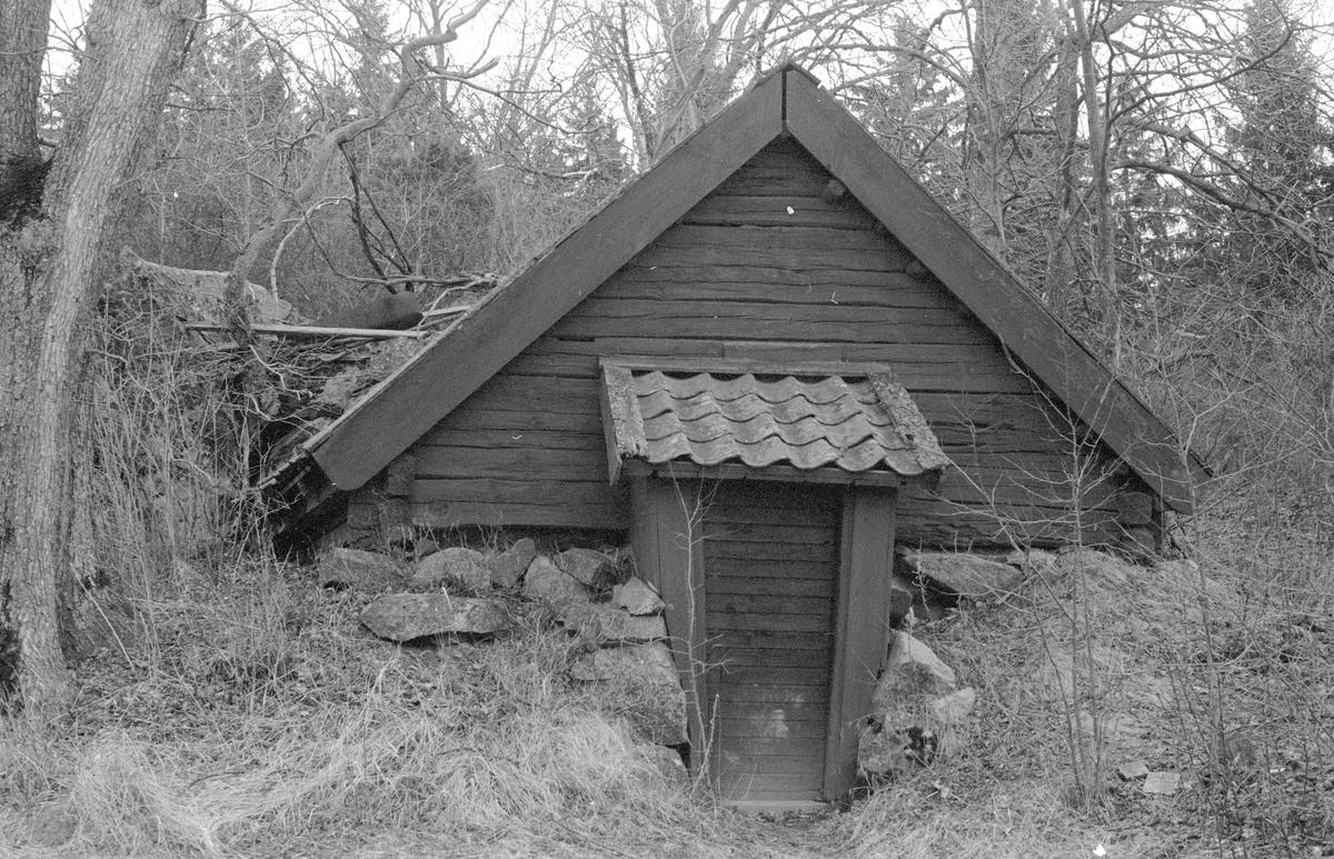 Källare, Skornome 1:2, Skornome, Hagby socken, Uppland 1986