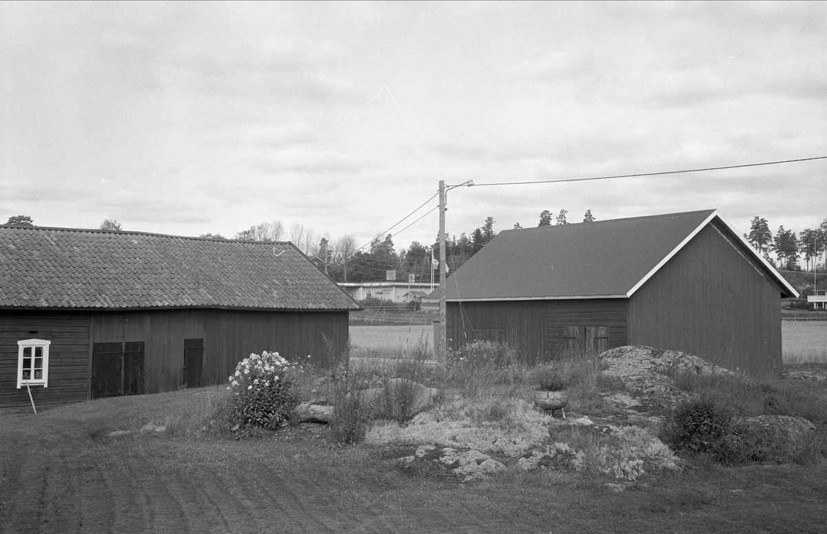 Ladugård och lada, Lilla Väsby 1:49, Almunge socken, Uppland 1987