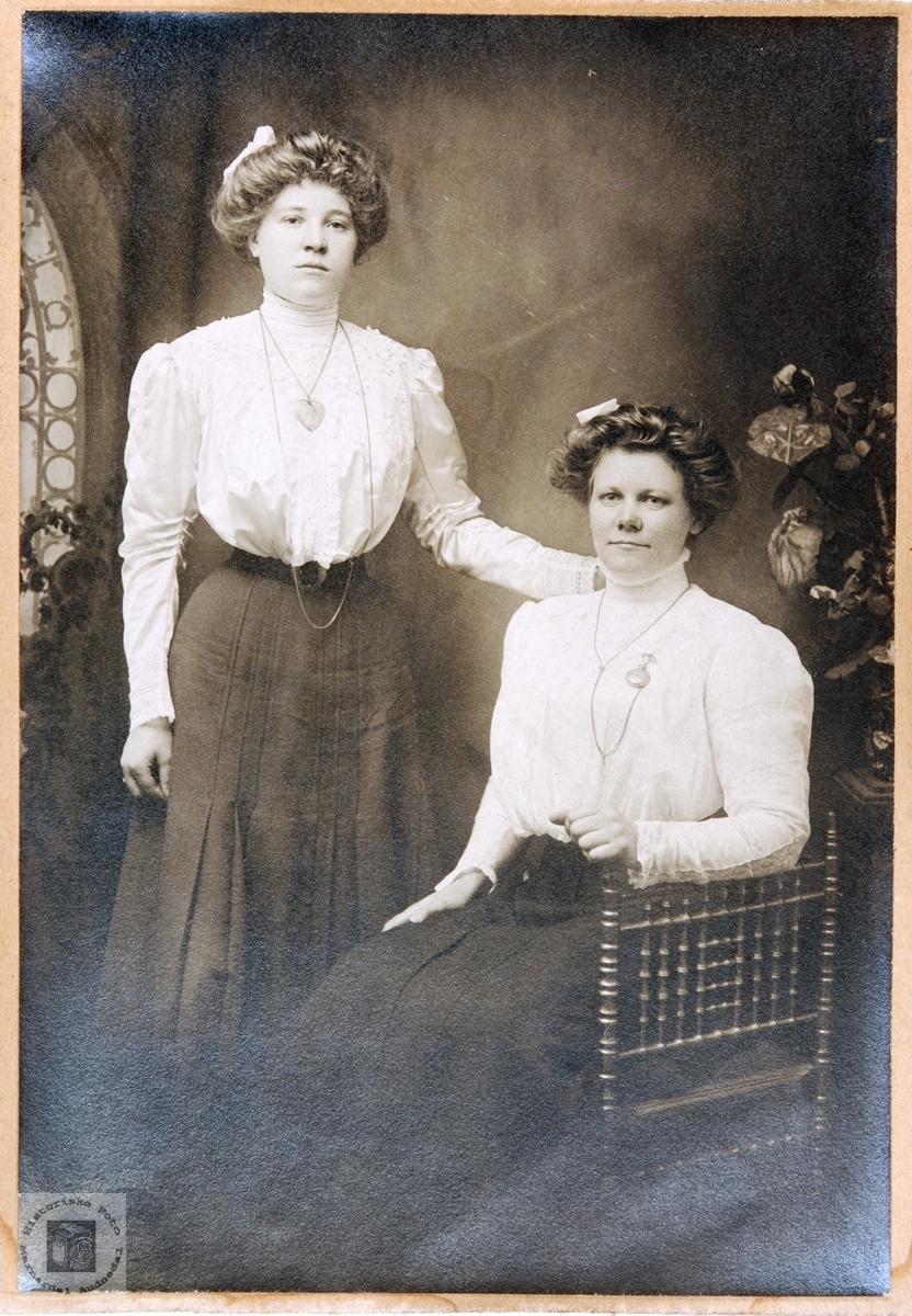 Portrett av nabojentene Sofie og Siri Birkeland. Audnedal.