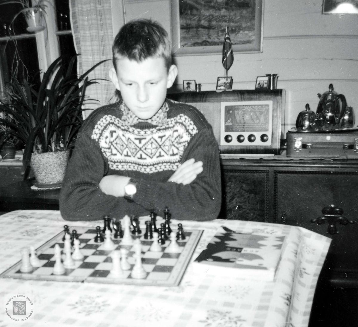 Sjakk er god hjernegymnastikk for Jan Harry Iglebekk. Grindheim Audnedal.