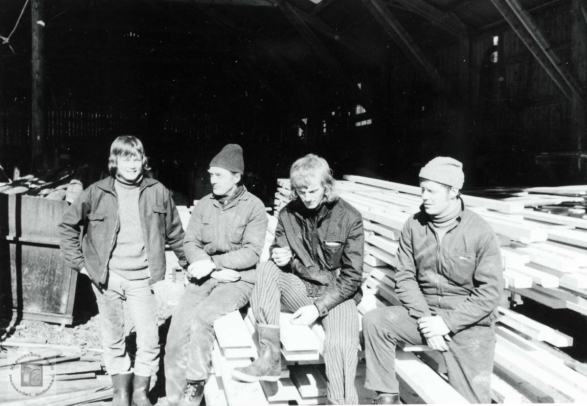 En del av arbeidsgjengen ved Monan Sagbruk. Bjelland.
