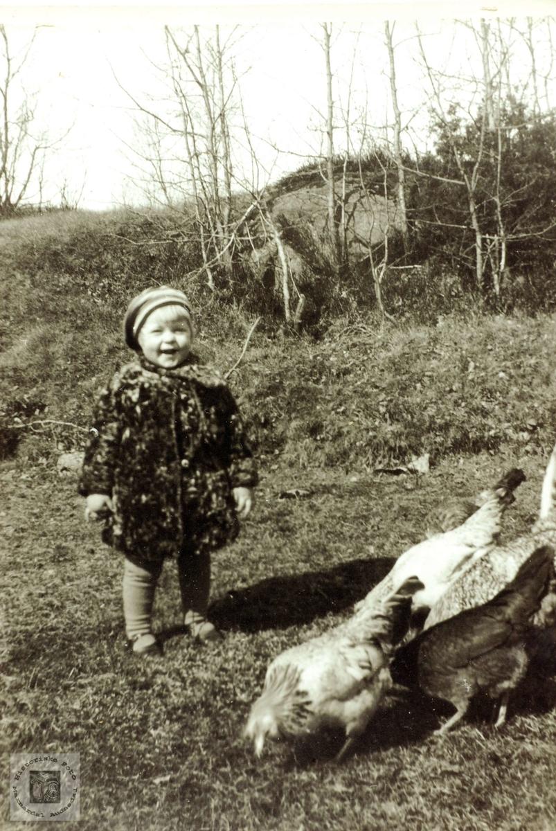 Marit Flottorp med høneflokken på Flottorp. Grindheim Audnedal.