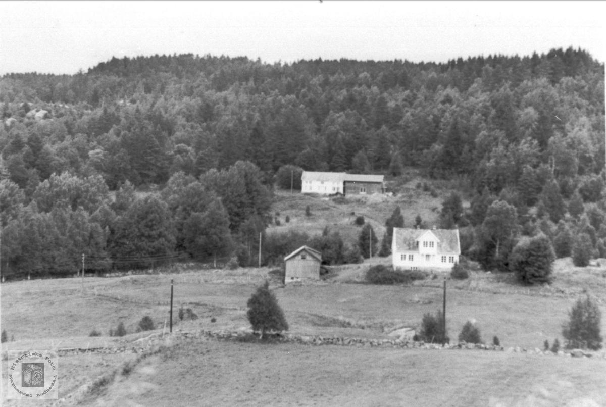 Roland i Bjelland.