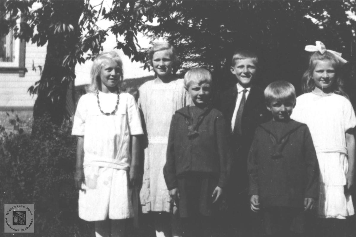 Søskenbarn. Barn etter Asbjørn og Anve Øyslebø.