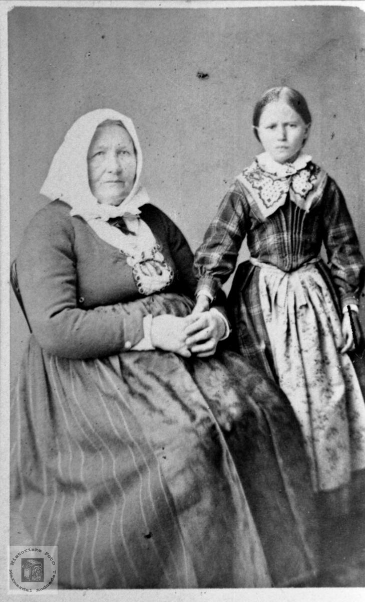 Dobbelportrett av Gunhild Åkset Heddeland og Gunhild Sørine Heddeland gift Diesen, Øyslebø..