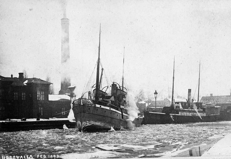 """Text på kortet: """"Uddevalla Feb. 1893""""."""