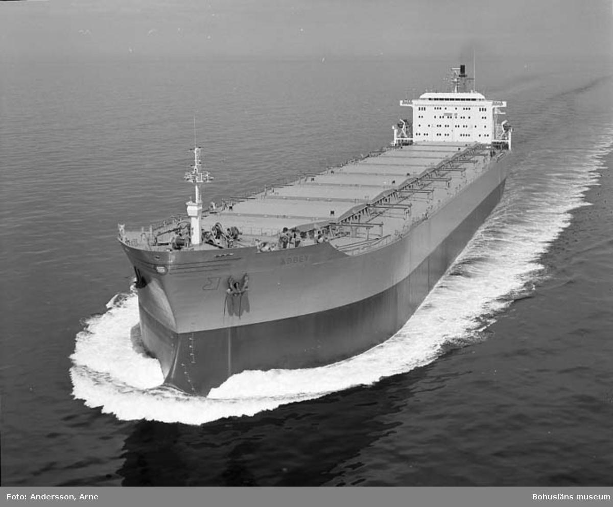 M/S Abbey DWT. 118.750 Rederi Grosvenor Leasing Co., London England Kölsträckning 78-04-13 Nr. 300 Leverans 79-07-06 Bulkfartyg.