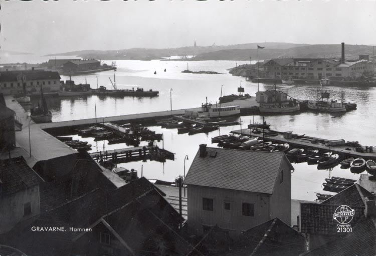 """Tryckt text på kortet: """"GRAVARNE. Hamnen"""". Notering på kortet: """"GRAVARNE SAKUMS SN. S. SOTENÄS JULI 1956. UTSIKT MOT SMÖGEN. Från Kungshamns hotell 1955""""."""