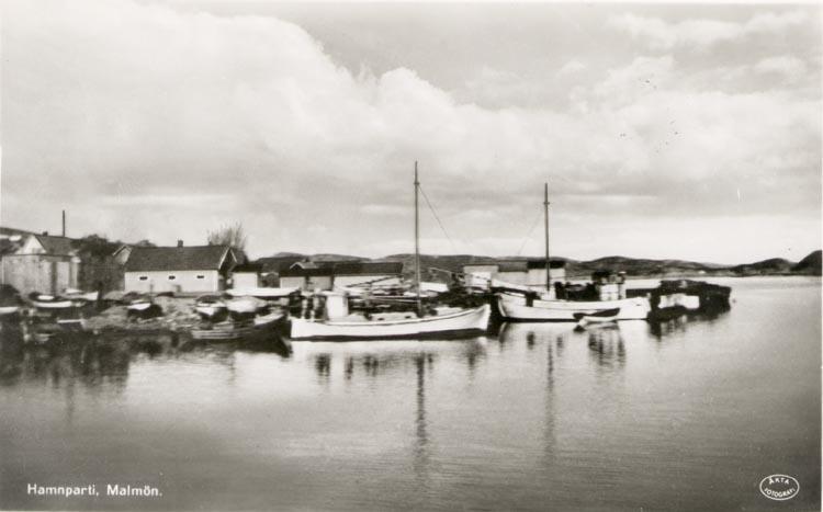 """Tryckt text på kortet: """"Hamnparti. Malmön"""".  """"Förlag: E. Leikness, Bohus Malmön"""". Noterat på kortet: """"8-9 sept. 1951""""."""