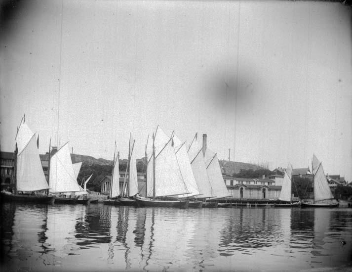 """Enligt text som medföljde bilden: """"Lysekil. Badgästbåtarne från sjön 1899."""""""