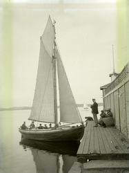 """Enligt text som medföljde bilden: """"Badgästbåt vid H.B."""""""