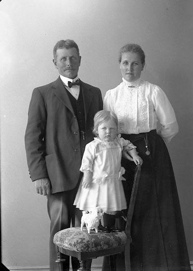 """Enligt fotografens journal nr 2 1909-1915: """"Karlsson, Ferd. Stenung""""."""