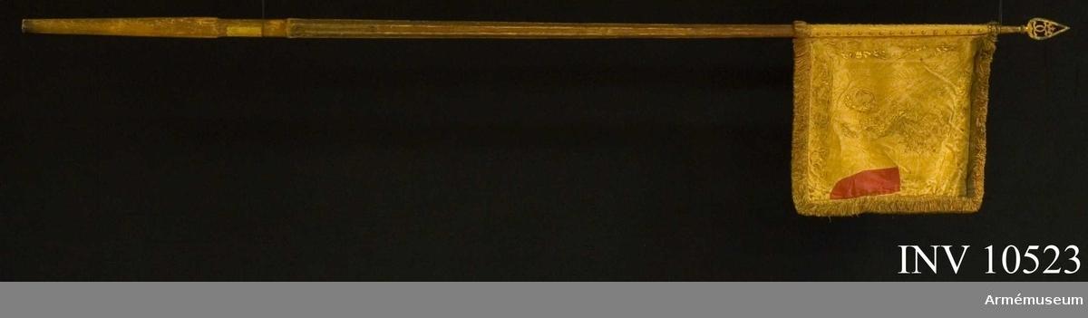 Tillverkad av Baltzar Friedrich år 1678. Duk av röd, stormönstrad dubbel sidendamast, fodrad med groft lärft. Längs kanterna bård av stiliserat bladverk, kronor och  korsade palmkvistar i rödskuggat guld. Å inre sidan en gyllene, rödskuggad grip - Östergötlands sköldemärke - dock utan de därtill hörande silverrosorna. På yttre sidan Carl XI:s  namnchiffer, ett dubbelt C under sluten kunglig krona, prydd med pärlor i silver och stenar i rött och grönt, bården liknande sidans, allt i rödskuggat guld. Kant av 50 mm bredd, frans av rött silke och guld. Duken fäst vid stången med tre rader förgyllda mässingsspikar.Stång av furu, målad rödbrun ovan greppet, fyrrefflad, förstärkt med tre järnskenor, löpande bärring; stången nedtill avsågad, färgen bortnött. Spets av järn, förgylld. Holk, upptill kulformigt utvidgad i ett stycke med 130 mm högt blad, prytt med dubbelt C under krona, allt i genombrutet arbete.