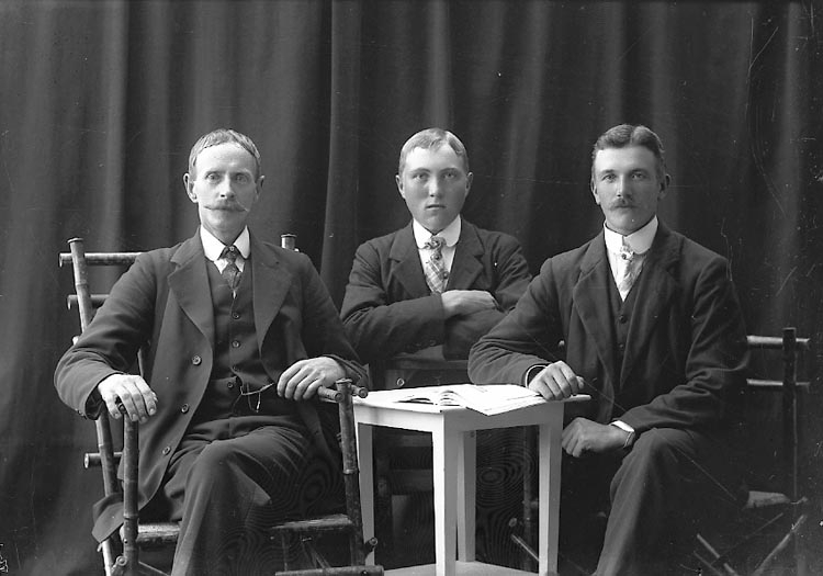 "Enligt fotografens journal nr 2 1909-1915: ""Mattsson, Albin, Vreland, Svanesund""."