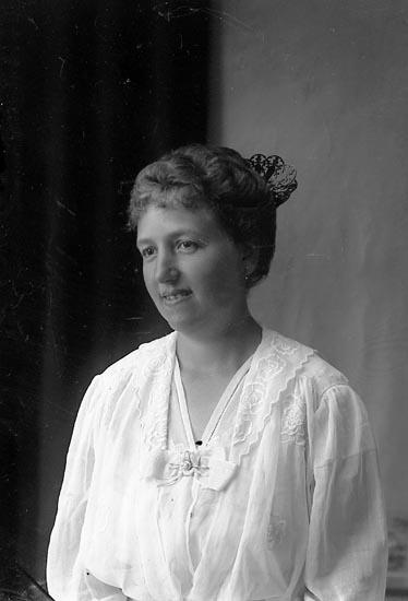 """Enligt fotografens journal Lyckorna 1909-1918: """"Doktorinnan Cedergren, Lyckorna""""."""