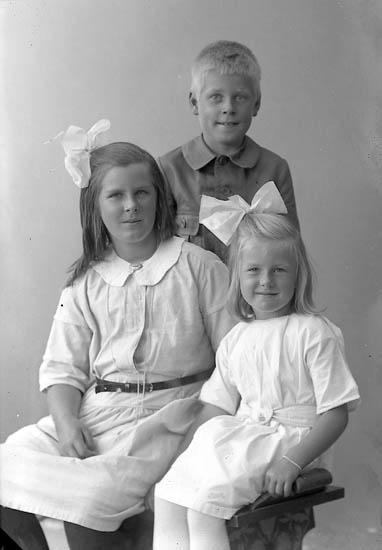 """Enligt fotografens journal nr 4 1918-1922: """"Ahrenberg, barn Pilgården Här""""."""