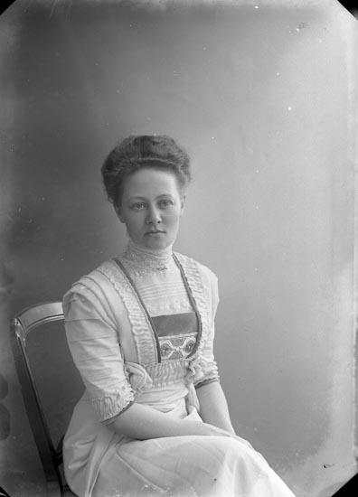 """""""Enander, Elin Elfhög Trollhättan"""" enligt fotografens journal nr 1 1904-1908"""