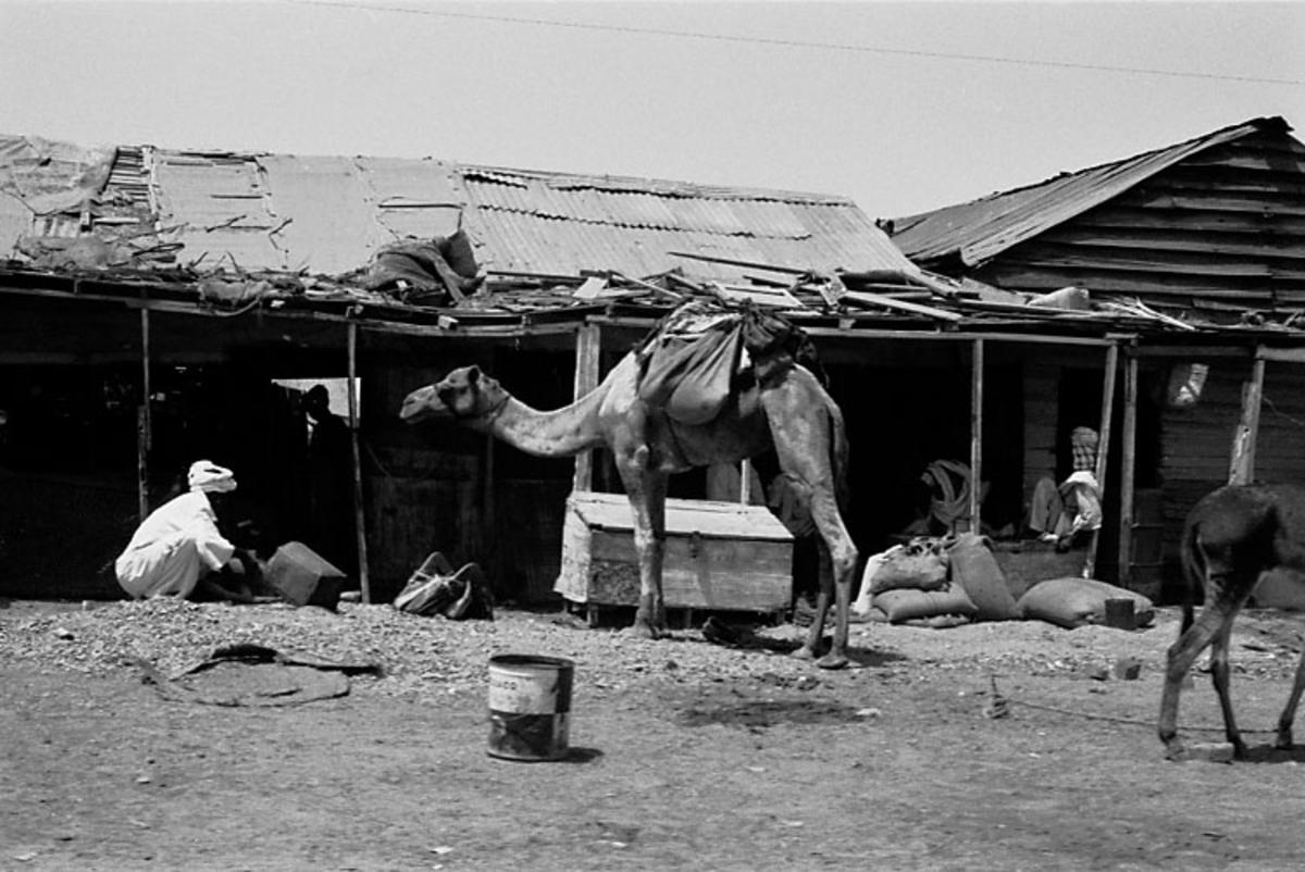 Afrikaresa, Port Sudan Samtidigt förvärv: Böcker och arkivmaterial. 36 bilder i serie.