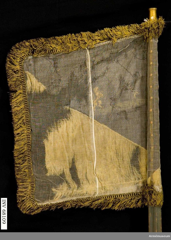 Duk: Tillverkad av styckad gul och svart damast, skarvad nedtill (den gula biten). Duken fäst med tre rader tennlikor på ett band. Dukens utsida belagd med tarlatan.  Dekor: Målad, omvänt lika på båda sidor, ett torn i silver med två portar, åt stången till ett upprest svärd med guldfäste, på andra sidan ett gyllene, mot tornet vänt lejon, allt på grön mark, Bohusläns vapen.  Stång: Tillverkad av trä, kannelerad, mörkgråmålad. Holk av mässing. Saknar spets. Nedtill klack av järn.  Frans: Dubbel, tillverkad i svart och gult silke.