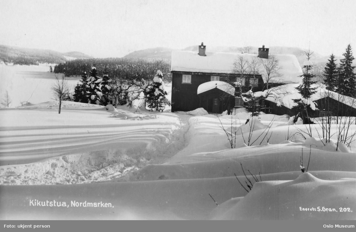hytte, snø, skog