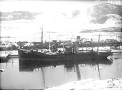 Ångtrålaren STORMFÅGELN i Uddevalla hamn