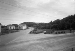 """Uppgift enligt fotografen: """"Uddevalla. Sörkälleparken."""""""