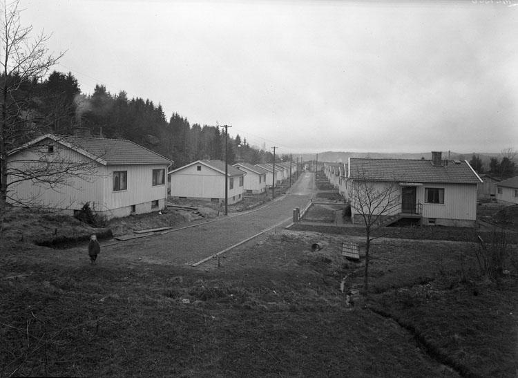 """Uppgift enligt fotografen: """"Uddevalla. Småhus. Garvaremyren."""""""