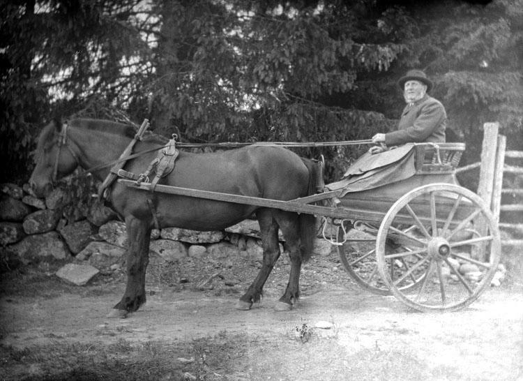 """Enligt senare noteringar: """"Johan Magnusson i Stenbacka på väg till kyrkan. Taget på Stenbacka, 20/6 1915."""""""