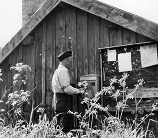 Cyklande lantbrevbärare Sven Eriksson, från Ljusterö, under brevbäringstur mellan V:a Lagnö till Lagnö Ö (c:a 7 km).  Fotot taget vid Östra Lagnö.