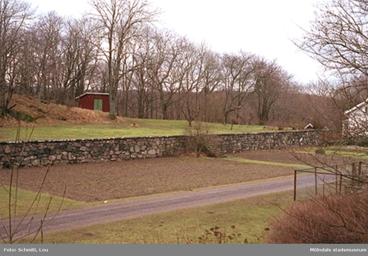 """En mur och köksträdgård vid Gunnebo slott. Under senare delen av 1900-talet odlades marken invid Gunnebo endast i ringa utsträckning. Ett nytt drivhus återskapades 1996-1999. Till höger ser man en skymt av det vitmålade """"Solbacken"""", Gunnebo slotts bostad för skogvaktaren, chauffören och arrendatorn. Grusvägen som ligger framför, leder till Turistinformation samt café och restaurang."""