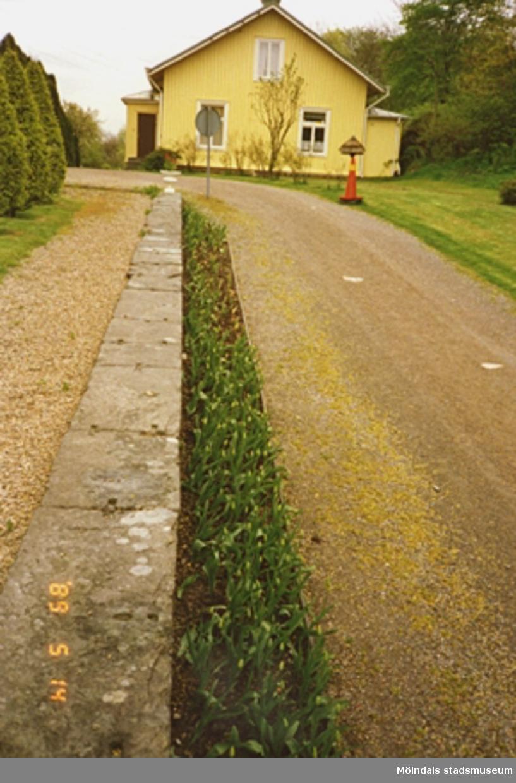 Ett gult bostadshus som ligger åt öster från slottets håll sett. I bildens mitt ses en stenmur, blomsterrabatt och grusgång som leder mot bostadshuset.