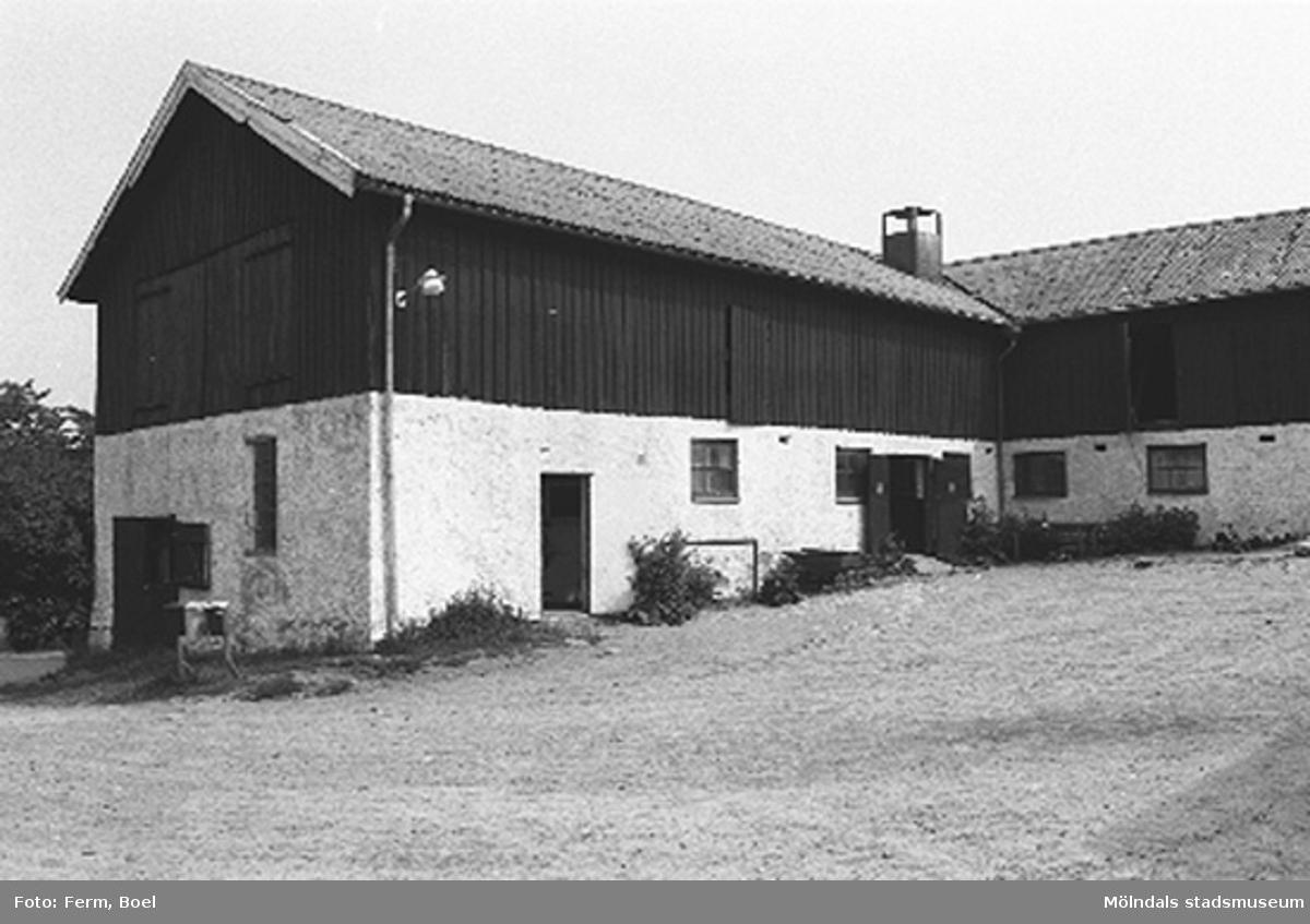 En ladugård.Lunnagården i Balltorp 1992-06-30.