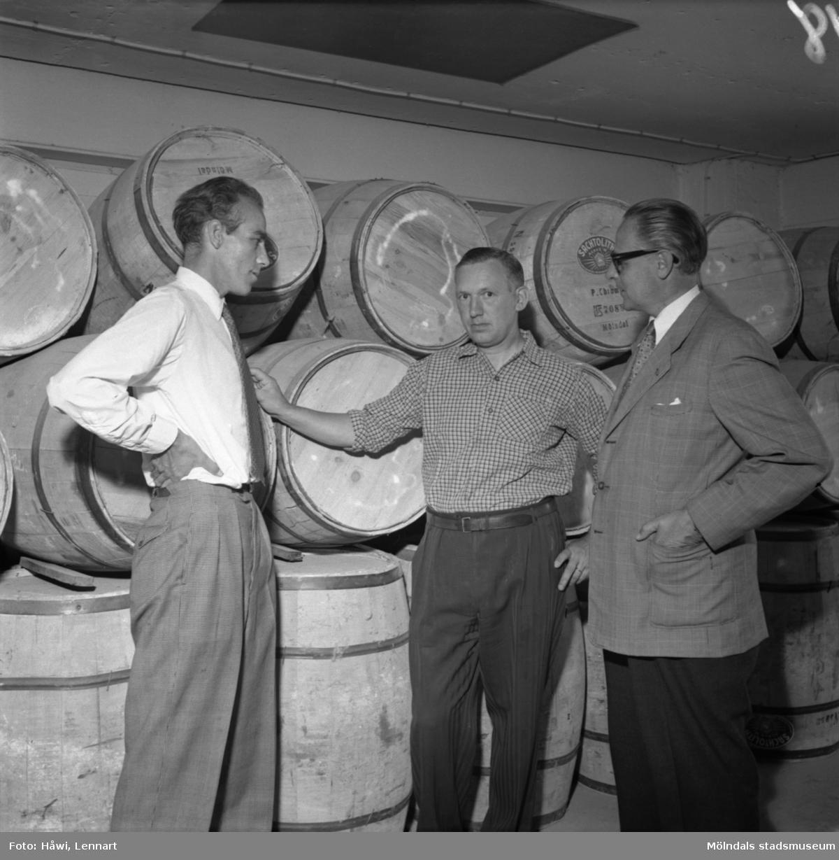 Reportage från Papyrus pressvisning i Mölndal, 29/8 1955. Tre män framför en samling tunnor.