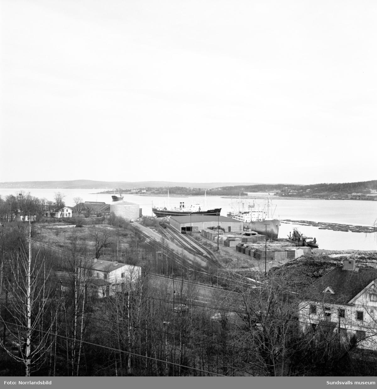 Översiktsbild över Svartviksbukten.
