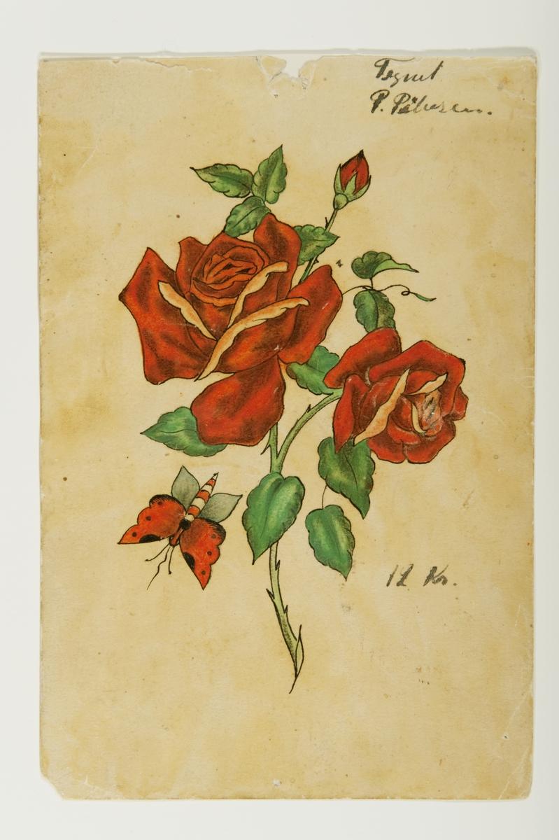 """Tatueringsförlaga. Två röda rosor på en stjälk samt en fjäril.  """"Rosen är typisk inom tatueringskonsten, men även inom allmoge- och folkkonsten. Det är också ett motiv som kan tolkas på många olika sätt. Rosen kan syfta på kärlek och skönhet, men tolkas också ofta som en symbol för kvinnan. Motivet var förr ett vanligt motiv för män. Idag ett motiv som både män och kvinnor tatuerar sig med. Fjärilen är också ett typiskt motiv inom tatueringskonsten. Motivet kan tolkas som det flyktiga, men kan även tolkas som en symbol som bringar lycka.""""  Text från appen """"Tatuera dig med Sjöhistoriska"""" som gjordes i samband med utställningen Tro, hopp och kärlek 2012."""
