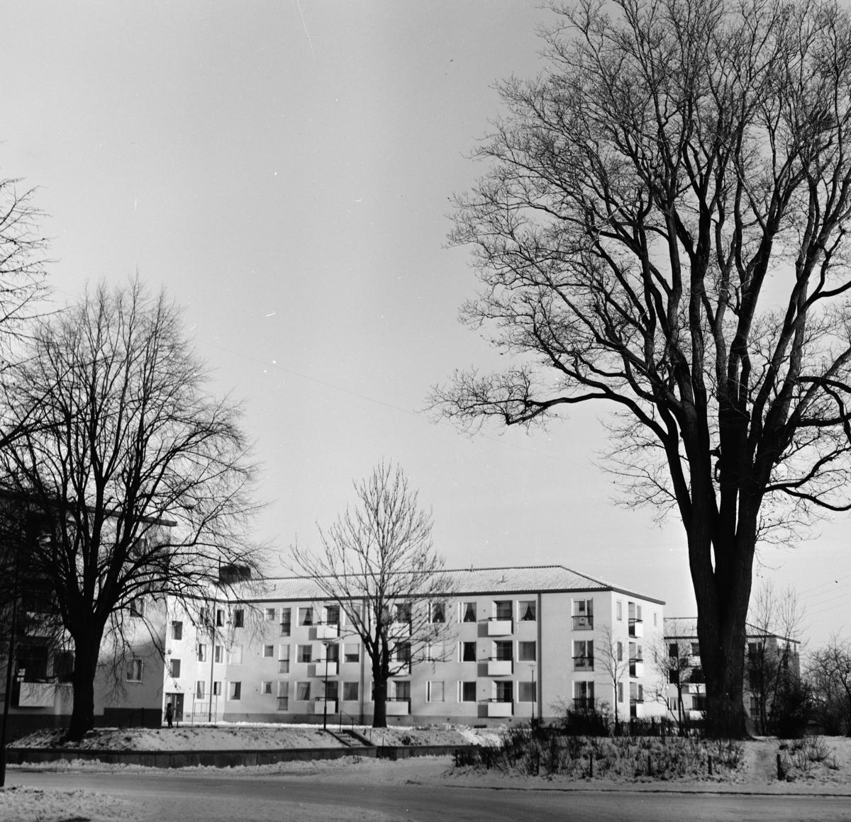 Flerfamiljshus vid Luthergatan,Gävle Fasad som vetter mot öppen plan med gräs och träd Exteriör