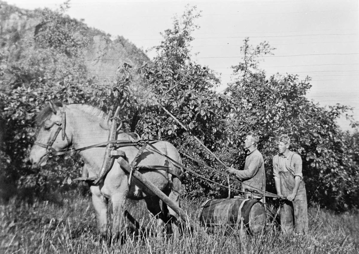 Sprøyting hes mennesker