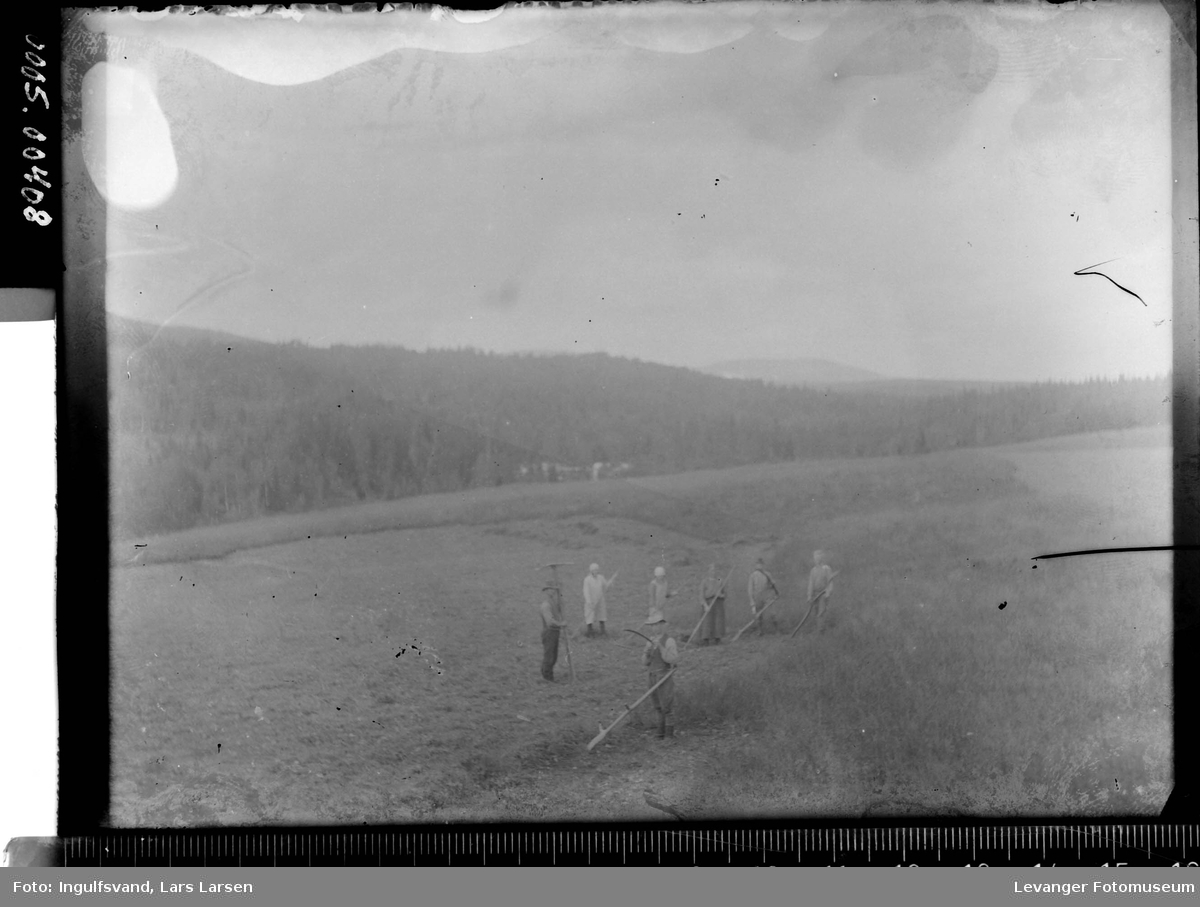 Gruppe mennesker som driver onnearbeid, slåttonn med ljå og rive, trolig høying på marka.
