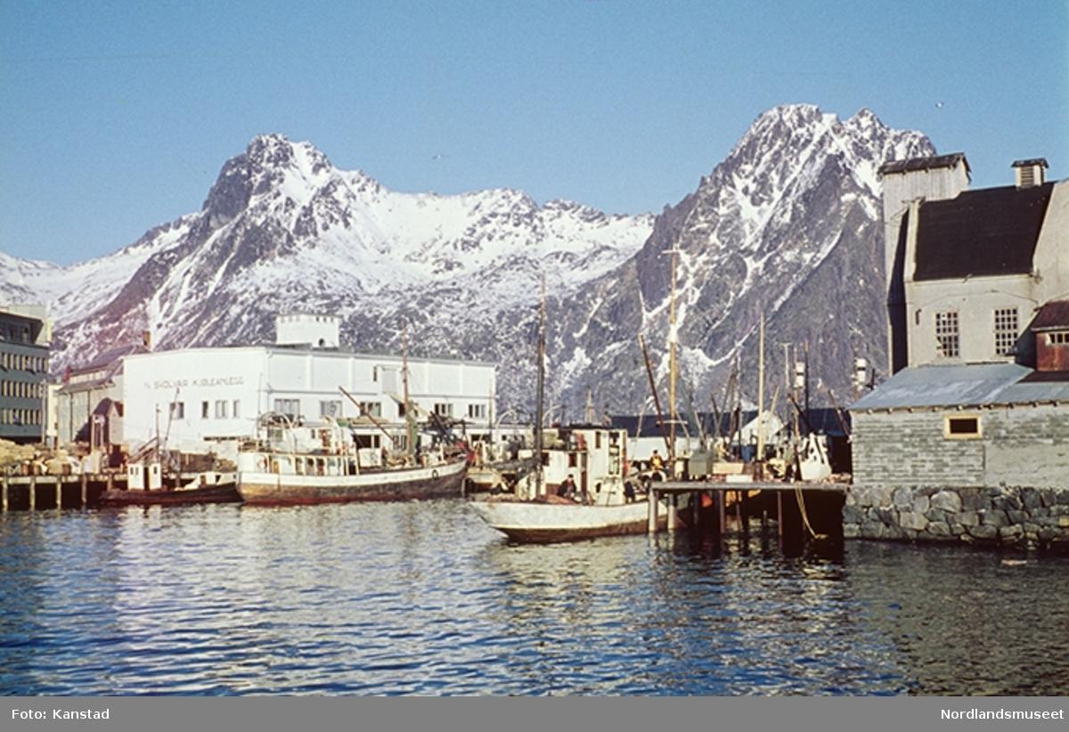 Havn, båter, A/S Svolvær kjøleanlegg