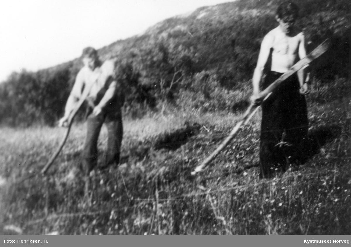 Leka, slåtton i Gutvik